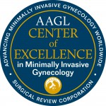 Center of Excellence in Minimally Invasive Gynecology